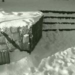 Snow Shoveling Time Again
